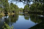 janisjoki001.jpg