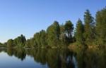 janisjoki085.jpg